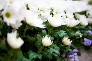 相続ガイド 葬儀内容の決定